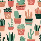 Succulents & Plants