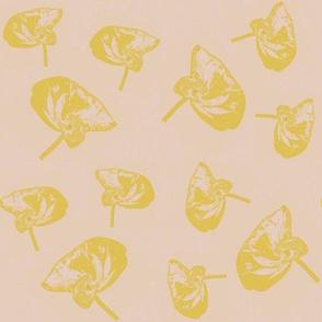 chartreuse anthurium