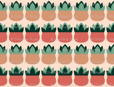 Succulent_blush