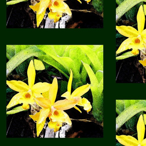 Yellow_Orchids_Pillow_