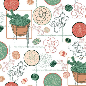 Succulents and Lizards