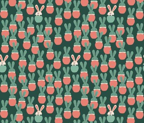 Rrrbunny_succulents_random.ai_shop_preview
