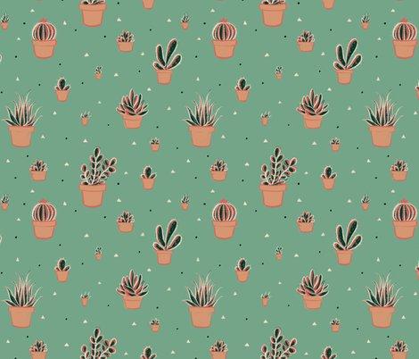 Rrlimited_palette_succulents_swatch_shop_preview