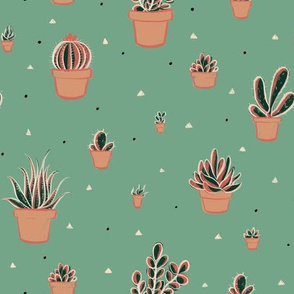 Succulent Cacti in Flowerpots with Triangles and Dots