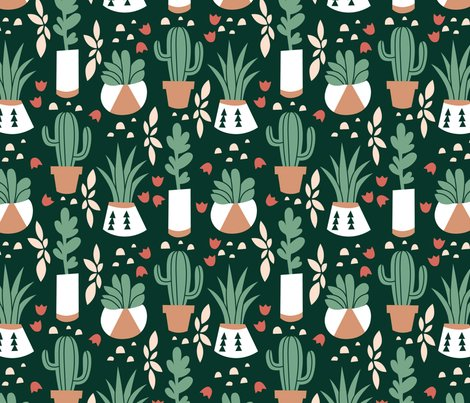 Rrsucculents_and_cacti_shop_preview