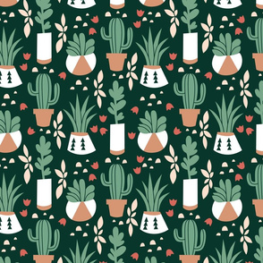 Succulents_and_Cacti