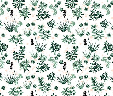 succulents fabric by laura_may_designs on Spoonflower - custom fabric