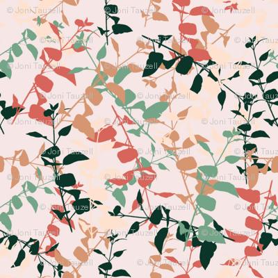 succulent_leaves