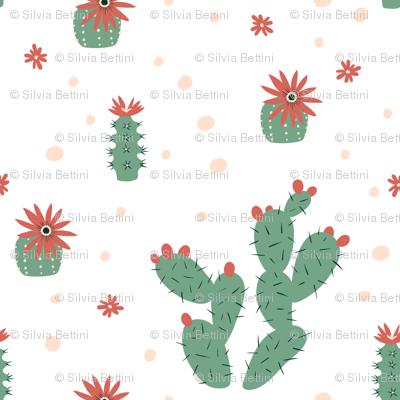 Zen Succulents
