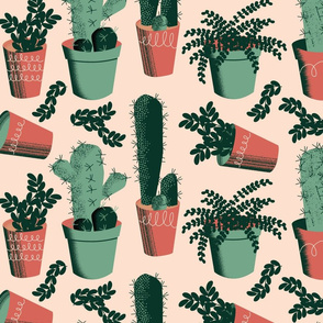 Succulent Succulents ~ Limited Color Palette