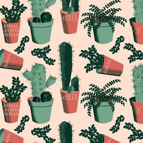 Succulent Succulents ~ Limited Color Palette
