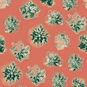 Rsucculents_shop_thumb