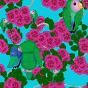 Lovebirds and Flowers