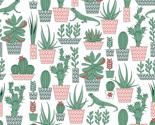 Rsucculent3_thumb