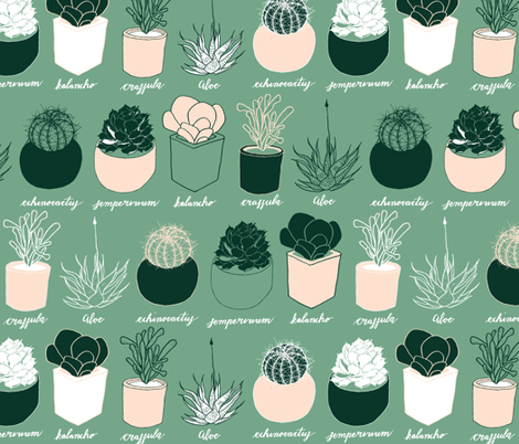 Succulents fabric by aimeelouiseillustration on Spoonflower - custom fabric