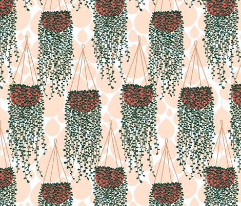 Rlimited_palette_succulents-_chain_of_pearls_shop_preview