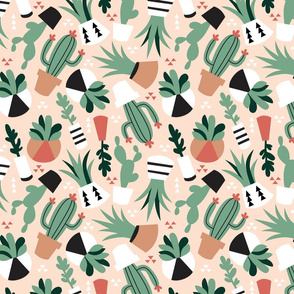 Succulent_Tumble