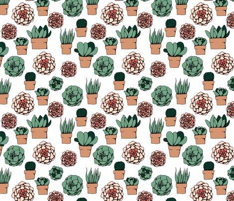 Rsucculents_swatch150_shop_preview