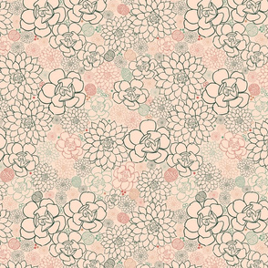 Succulent Field Salmon Pink