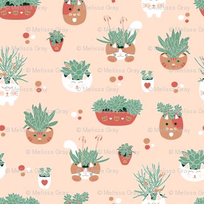 Cacti & Kitties