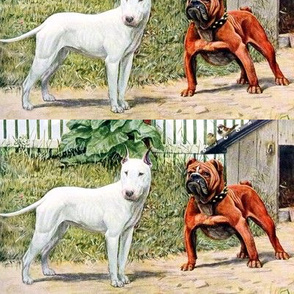 dogs English Bull Terriers EBT Bulldogs pedigree doghouses plants grass birds sparrows vintage fences