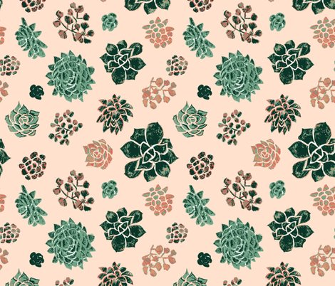 Rrhandrawn_succulents_on_pink_shop_preview