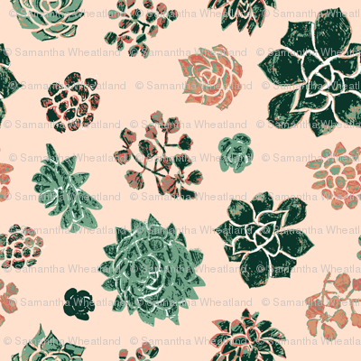 Handrawn_succulents_on_pink