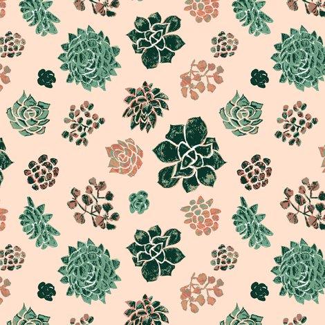 Rrrrrhandrawn_succulents_on_pink_shop_preview