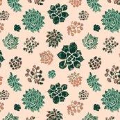 Rrrrrhandrawn_succulents_on_pink_shop_thumb