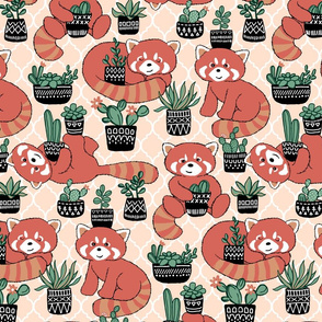 Red Panda & Potted Succulent Party