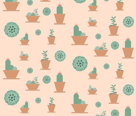 Rrsuculents-01_shop_preview