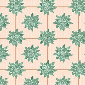 Betty_s_Succulent