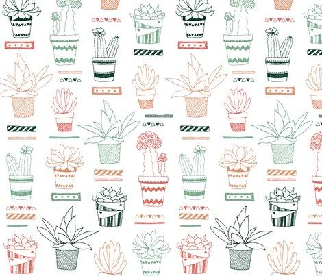 Rrrsucculents_v2_shop_preview
