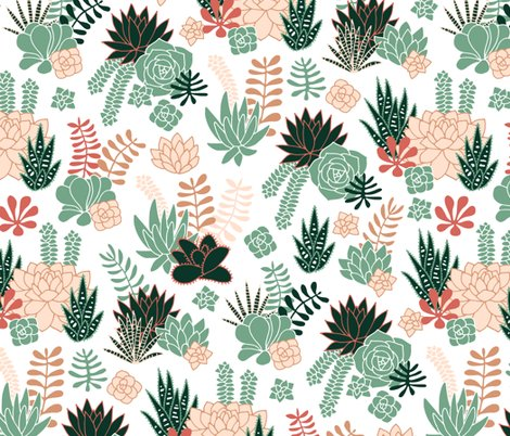 Rsucculents05_shop_preview