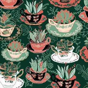 Tea Cups & Succulents