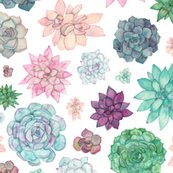 Rrsucculent_pattern_1_merged_shop_thumb