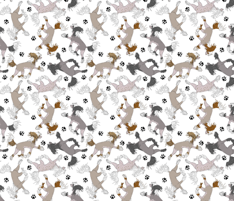 Trotting Chinese Crested hairless and paw prints - white fabric by rusticcorgi on Spoonflower - custom fabric