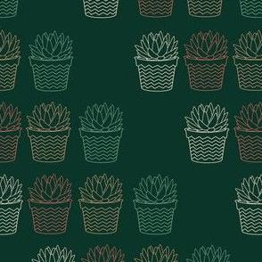 succulent contour dark green