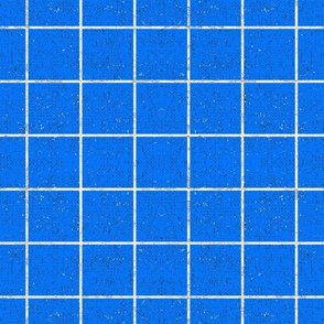 FRENCH_LINEN_GRID_BLUE_SOLID