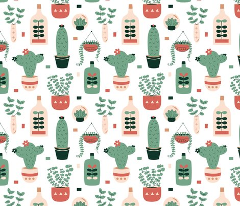 Rsucculents_shop_preview