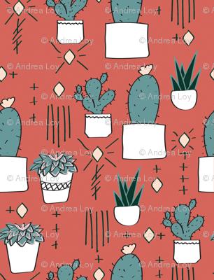 succulent_limited