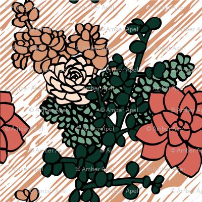 Limited_Color_Palette_Succulents