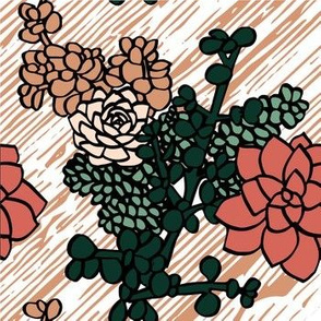 Limited_Color_Palette_Succulents