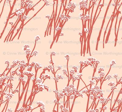 desert blooms - terracotta