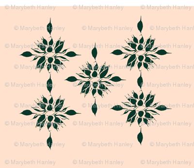 agave_marginata3_mbh