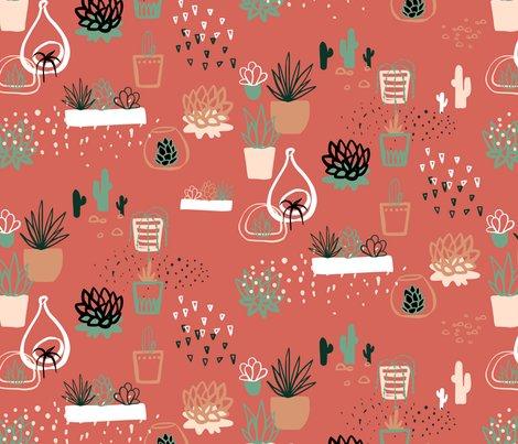 Rsucculents_shop_preview