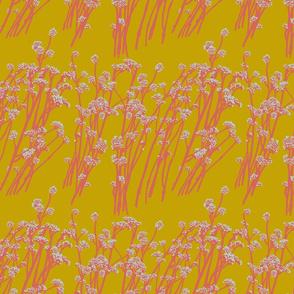 desert blooms - acid/pink