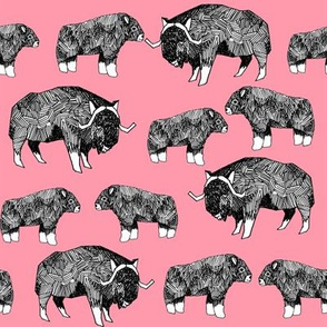 musk ox fabric // arctic animal fabric canada alaska greenland -  medium pink
