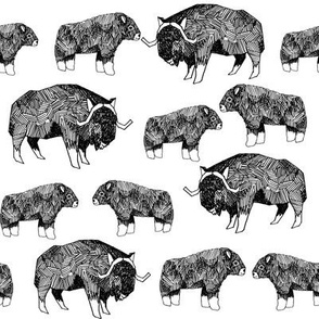musk ox fabric // arctic animal fabric canada alaska greenland - white