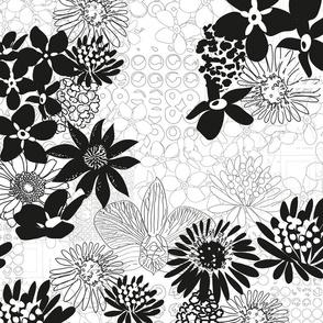floralis-blackwhite